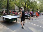 Настольный теннис Нескучный сад в Парке Горького